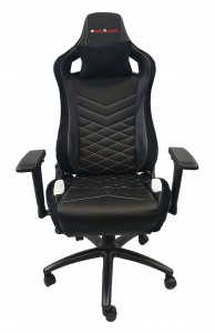 EverRacer ER099 Black and White Gaming Chair-Alpha R4