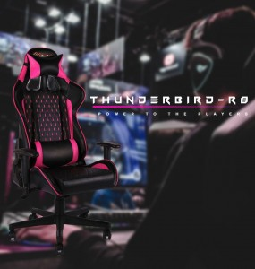 New EverRacer Gaming Office Chair PU Leather Black & Pink